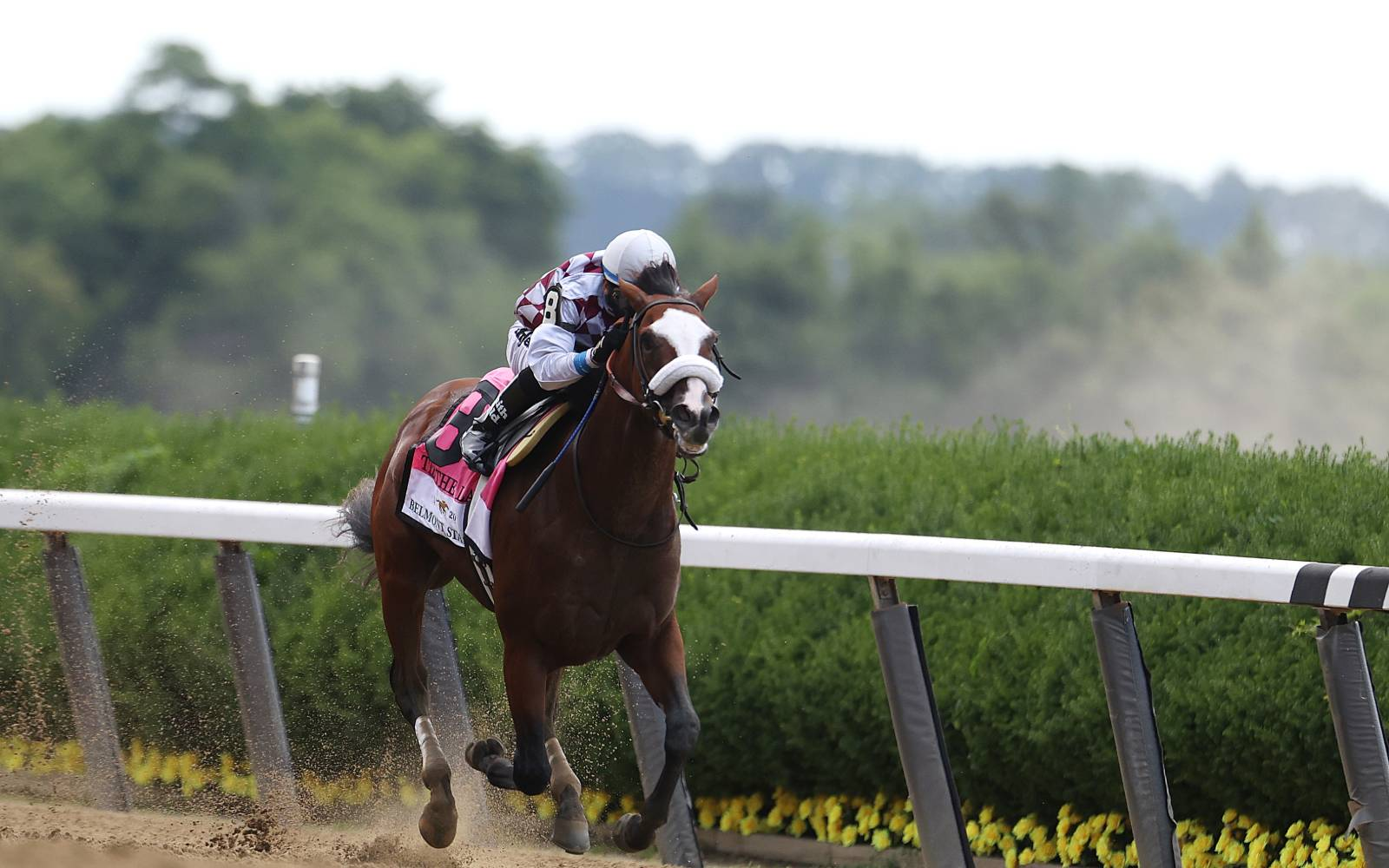 Can you bet the kentucky derby on draftkings arbitrage betting football premiership